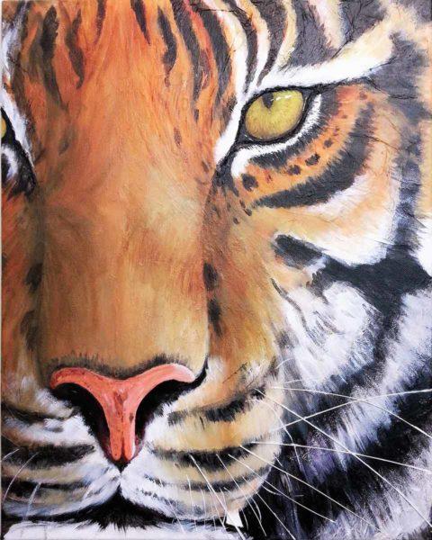 Tiger - Barbara Macnish